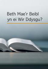 Beth Mae'r Beibl yn ei Wir Ddysgu?