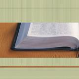 A Bíblia — Qual É a Sua Mensagem?