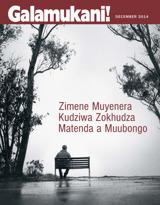 December2014  Zimene Muyenera Kudziwa Zokhudza Matenda a Muubongo