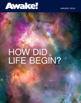January 2015 | How Did Life Begin?
