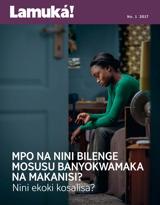 No1 2017| Mpo na nini bilenge mosusu banyokwamaka na makanisi?—Nini ekoki kosalisa?