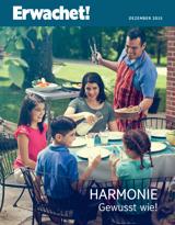 Dezember2015| Harmonie: Gewusst wie!