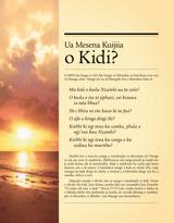 Ua Mesena Kuijiia o Kidi?
