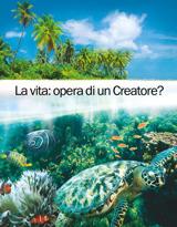 La vita: opera di un Creatore?