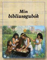 Mín bíbliusøgubók