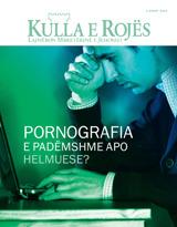 Gusht2013| Pornografia—E padëmshme apo helmuese?