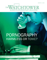 August 2013 | Pornography​—Harmless or Toxic?