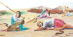 इस्राएलीहरूलाई सर्पले टोक्छ