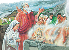 Noah and famili bilong hem