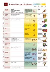 B15 Kalendara Yachihebere
