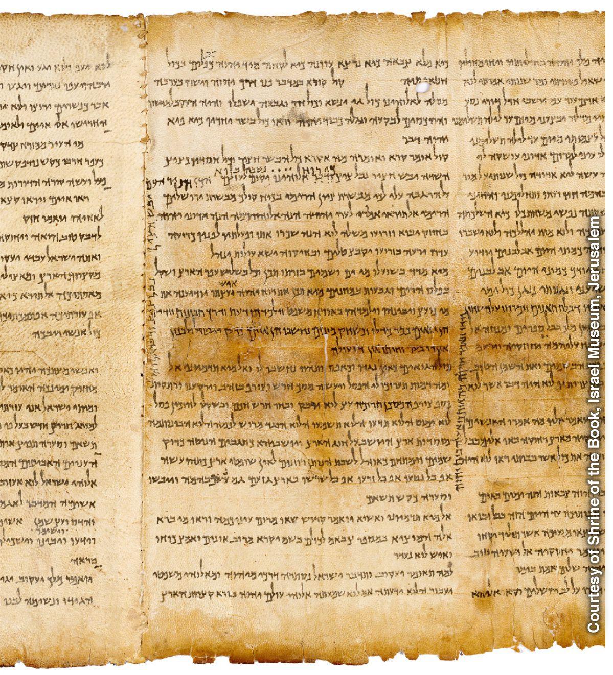 Nächsten am bibel welche dem urtext ist Welche Bibelübersetzung