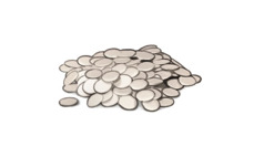 A pile of drachmas, 100 of them worth a mina