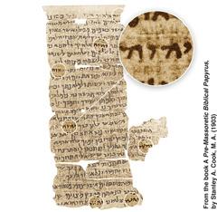 Papiro Nash