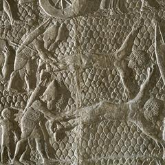 アッシリアの,石の浮き彫り