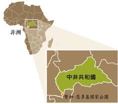 中非共合國的地圖