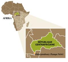 Sarintanin'ny République centrafricaine
