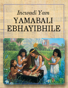 Incwadi Yam Yamabali EBhayibhile