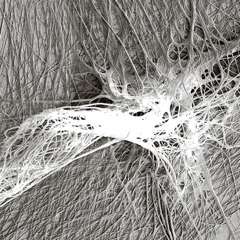 Вид копринени нишки