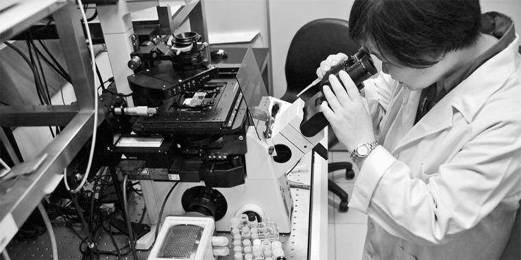 Dr. Feng-Ling Yang at work