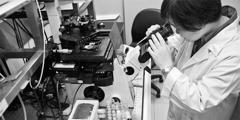 La doctora Feng-Ling Yang trabajando