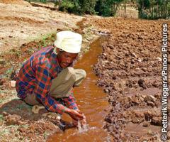 En afrikansk jordbrukare