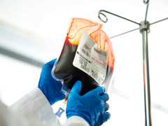 A clinician holding a bag of stored blood