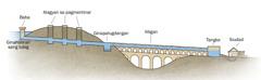 Diagram nga nagapakita sang mga bahin sang aqueduct