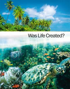 """עמוד השער של החוברת """"האם החיים נוצרו בידי בורא?"""""""
