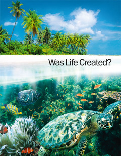 Ìwé pẹlẹbẹ Was Life Created?