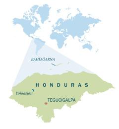 En karta över Honduras.