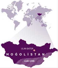 Moğolistan'ın yerini gösteren bir dünya haritası