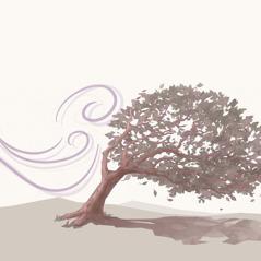 Een boom die met de wind meebuigt
