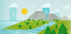 The hydrologic cycle includes evaporation, condensation, and precipitation