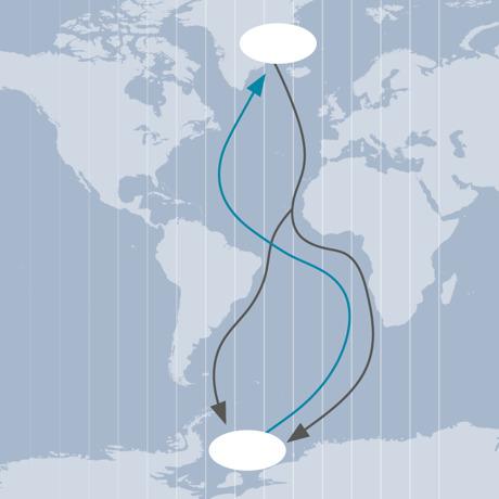 Silvertärnans migrationsrutt över Atlanten.