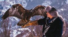 Uma águia, com os olhos vendados, no braço de um homem