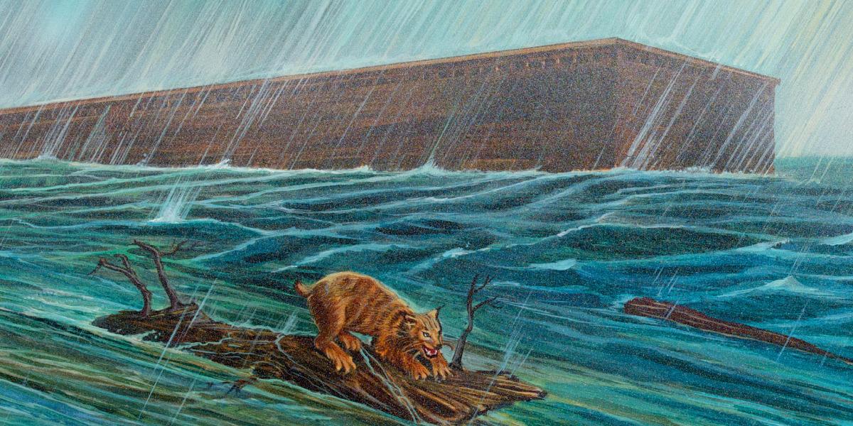 L'arca flotant a l'aigua