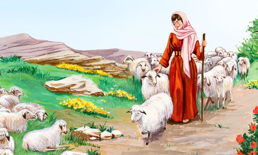 Jacob De La Biblia