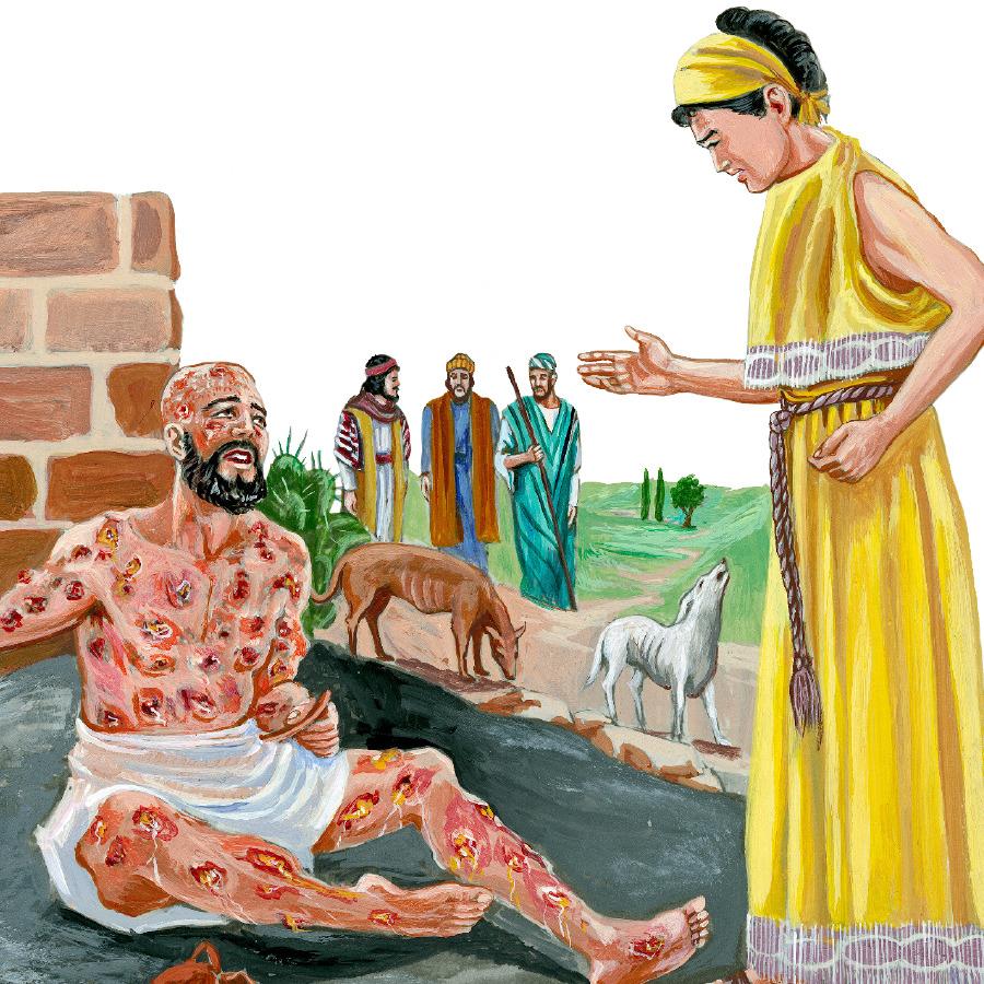 El Libro De Job Historia Bíblica