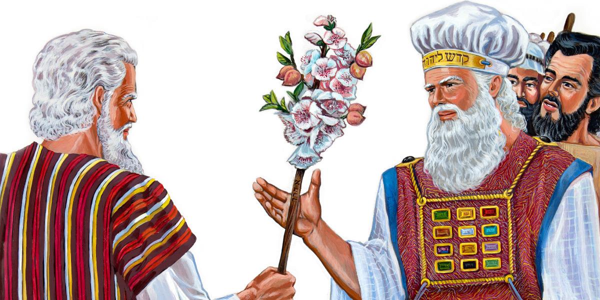 La vara de Aarón florece | Historia bíblica