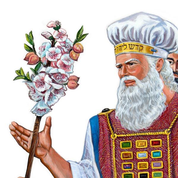 Aaron's Rod Grows Flowers | Bible Story