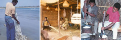 A woman washes vegetables; men make straw baskets; men and women work on a construction project