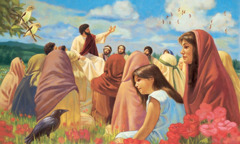Jesus directs people's attention to the birds in the sky
