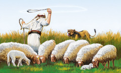 A shepherd protects his sheep from a lion