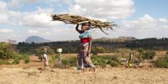 Hårdtarbejdende kvinde i et afrikansk land