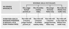 Kɔfu tɛɛsiaa ŋsɔɔ o peeleŋ choo216