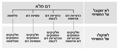 טבלה בעמוד 216