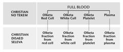 Blood, fofala main part bilong hem, and olketa blood fraction