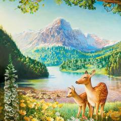 Bumi yang indah