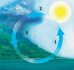 Vandens apytakos ratas