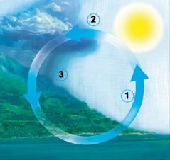 Кружниот тек на водата